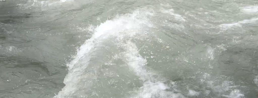 Fluss_SurEn - 1 (1)